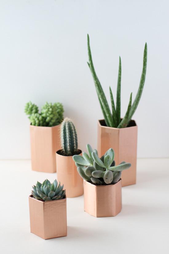 {DIY} 15 superbes idées de mini jardin d'hiver